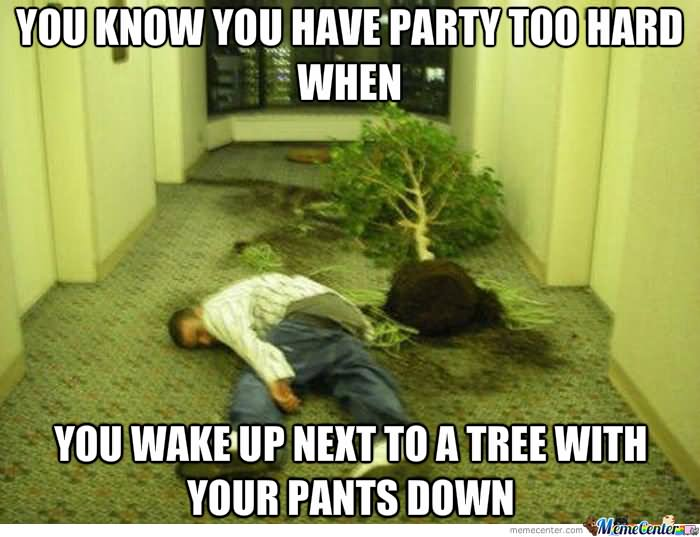 Funny Tree Meme You Wake Up Next To A Tree With Your Pants Down Picture