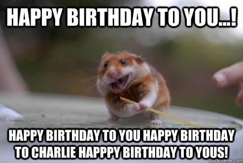 Funny Birthday Meme For Facebook : 30 most funny hamster meme pictures and photos