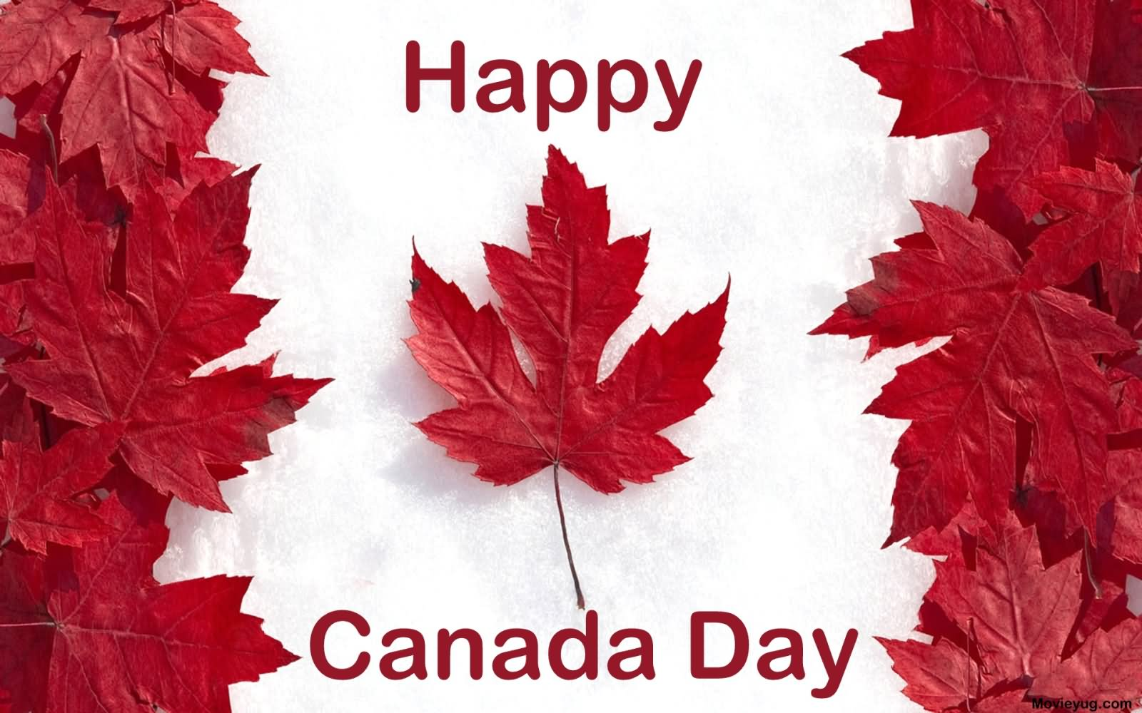 30 best canada day wishes photos and images happy canada day maple leaves m4hsunfo