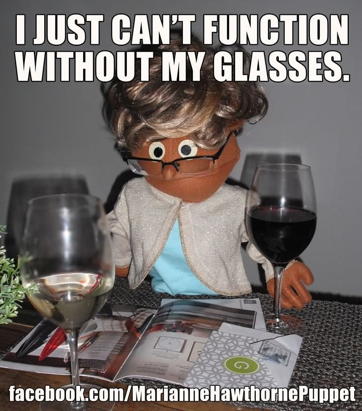 I Just Can't Function Without My Glasses Funny Meme Picture