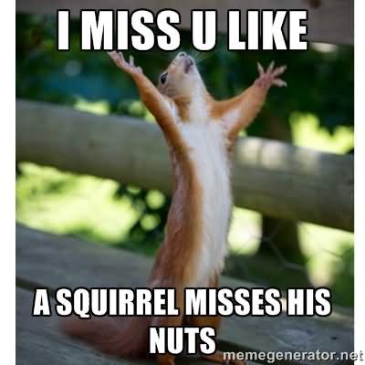 i miss you funny meme - photo #24