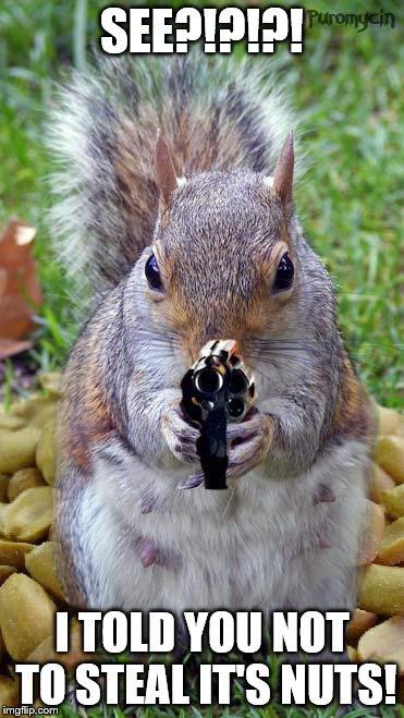 Squirrel kiss meme - photo#46