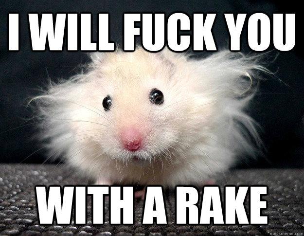 fuck you with a rake