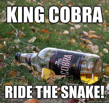 King Cobra Ride The Snake Funny Meme Picture