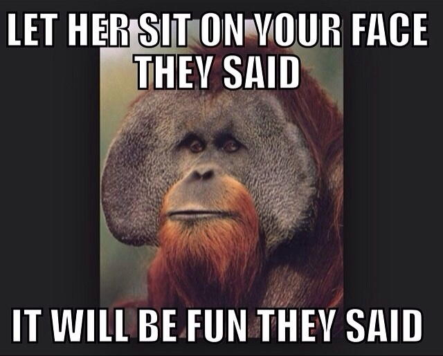 Let-Her-Sit-On-Your-Face-They-Said-Funny