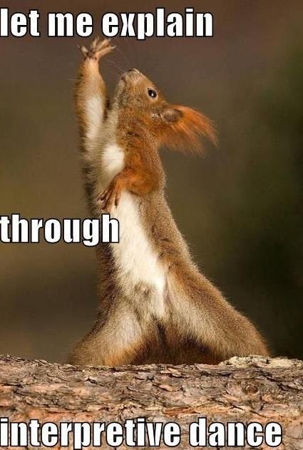 Let Me Explain Through Interpretive Dance Funny Squirrel Meme Picture 35 very funny squirrel meme pictures and images,Funny Squirrel Memes