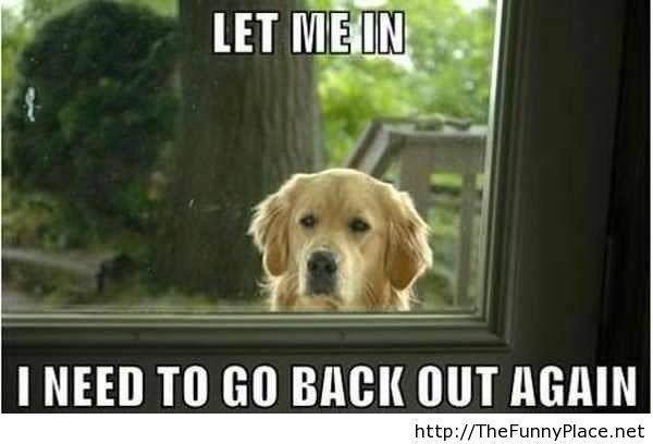 Funny Meme For Sad : Funny sad meme images and photos