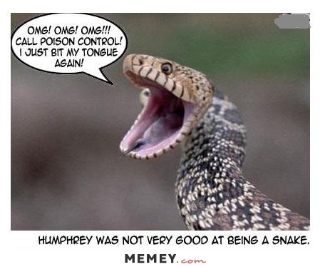 Omg Call Poison Control I Just Bit My Tongue Again Very Funny Snake Meme Picture