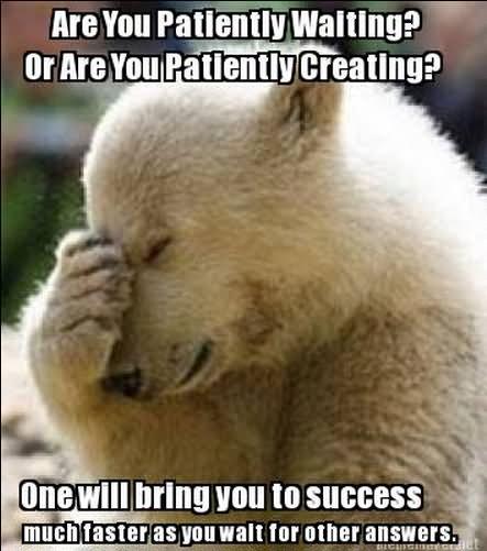 Sad bear guy meme - photo#22