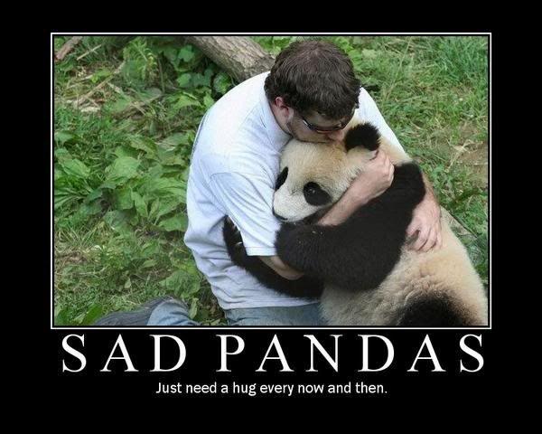 Sad bear guy meme - photo#27