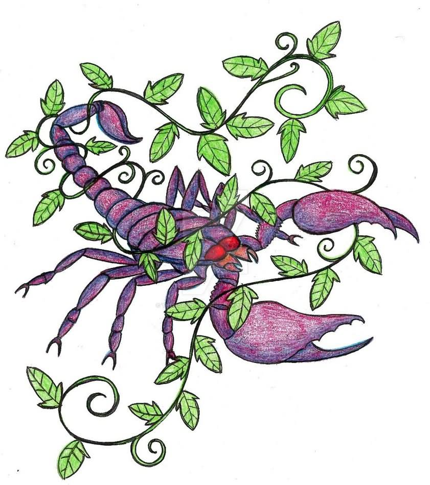 19584b73a Scorpion With Ivy Vine Tattoo Design By TheHoundofUlster