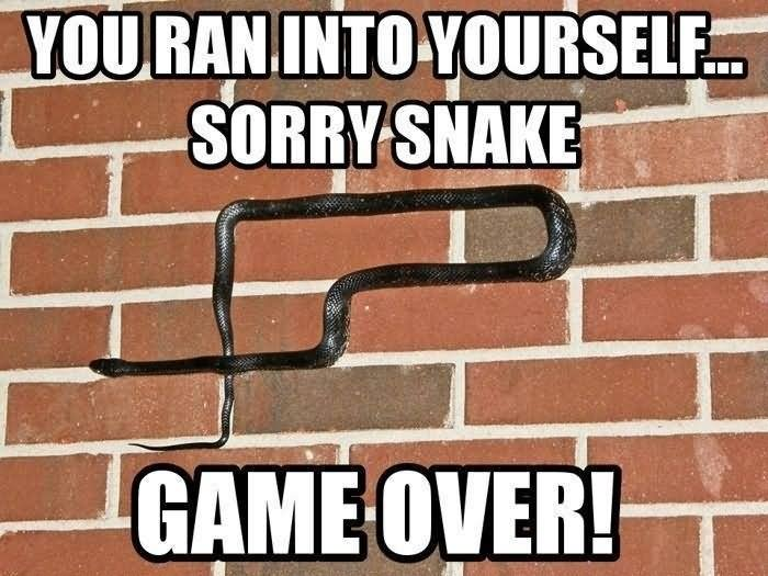 You Ran Into Yourself Sorry Snake Game Over Funny Meme Picture