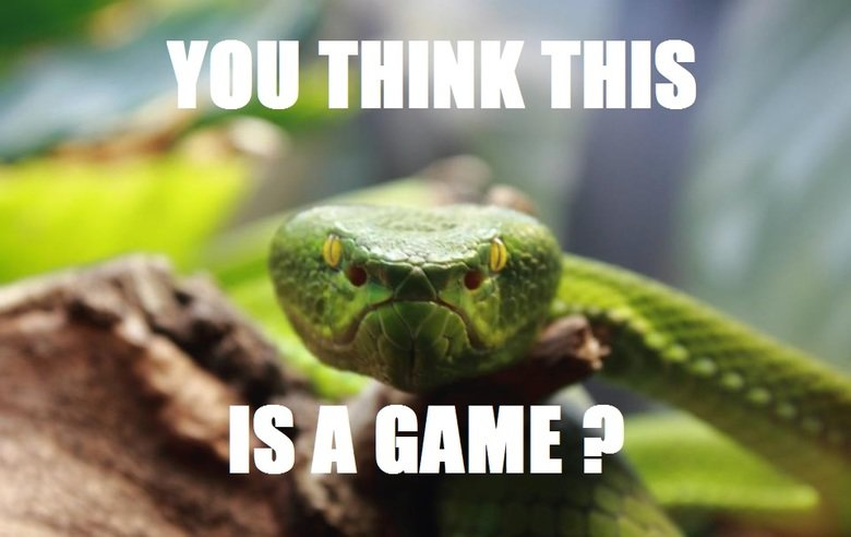 You Think This Is A Game Funny Snake Meme Picture