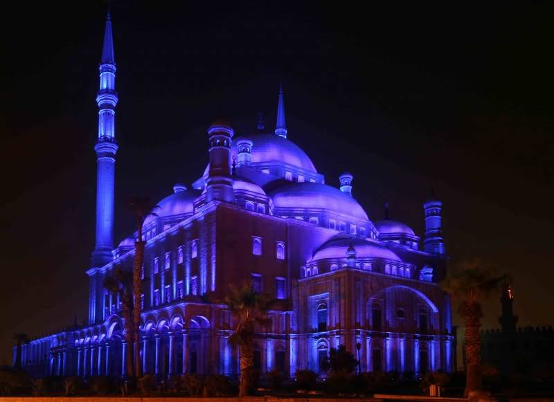 Adorable Night View Of The Muhammad Ali Mosque