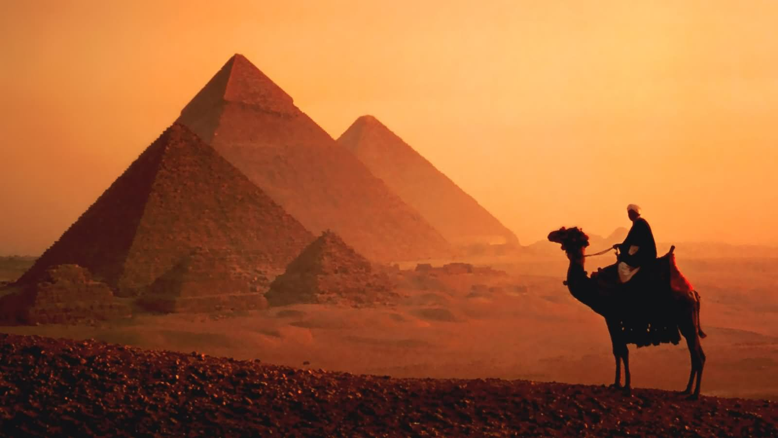 Camel Standing Near Egyptian Pyramids During Sunset