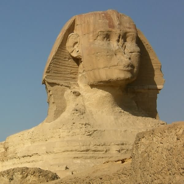 a overview of the ancient egyptian treasure the great sphinx The largest and most famous sphinx is the great sphinx of giza, it was a limestone statue known as the largest monolith statue in the world, standing 735 meters (241 ft) long, 193 meters (63 ft) wide, and 2022 m (6634 ft) high.