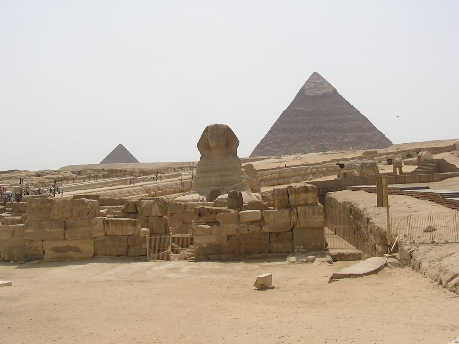Egyptian Pyramid View From Sphinx