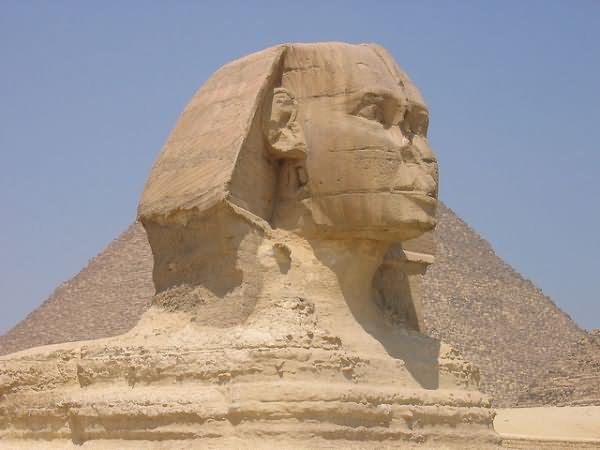 Face Closeup Of Great Sphinx of Giza, Egypt