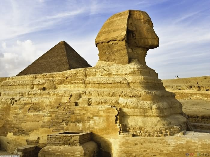 Great Sphinx Side View Picture