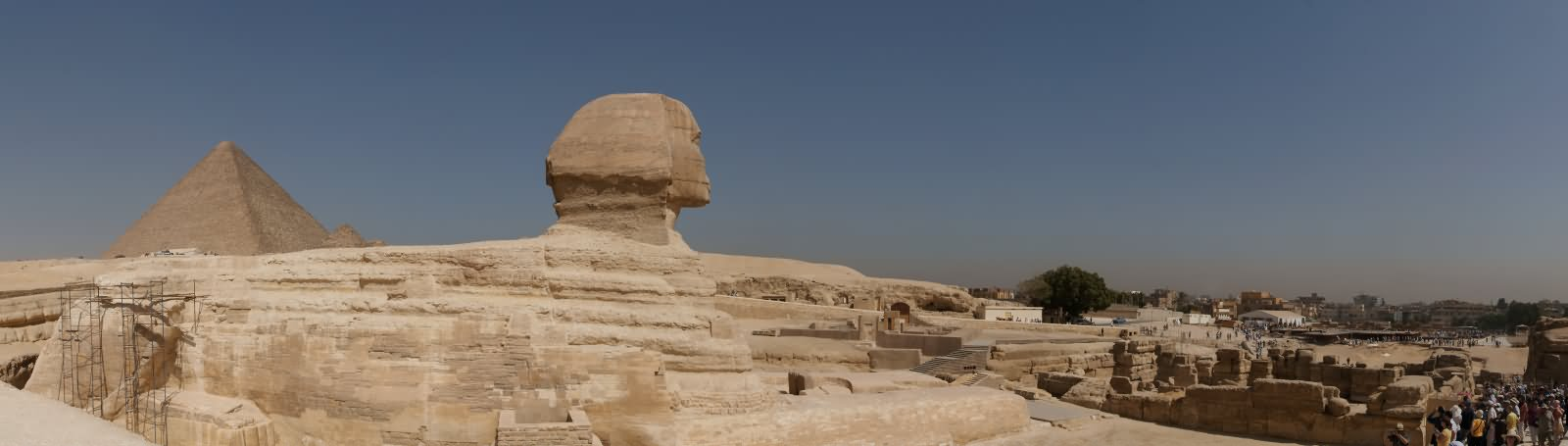 Panorama View Of The Great Sphinx of Giza