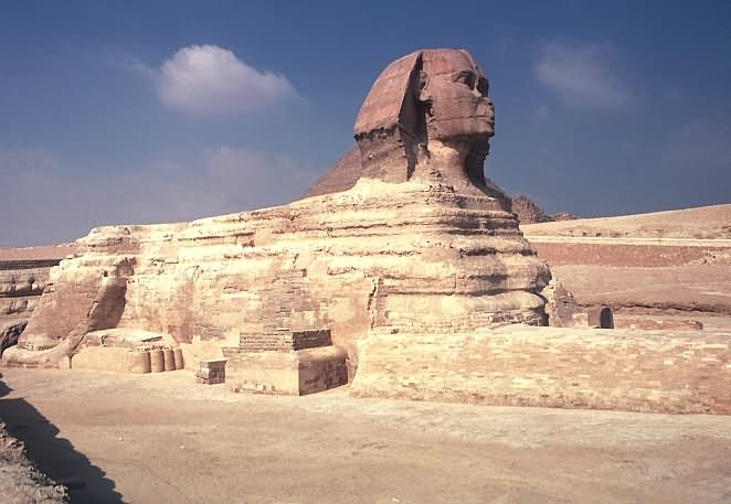 Side View Of Great Sphinx