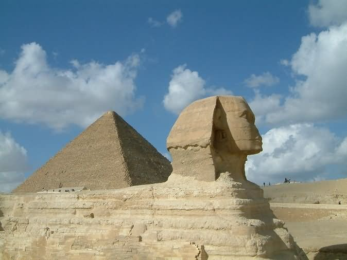 Side View Of The Great Sphinx of Giza And Pyramid