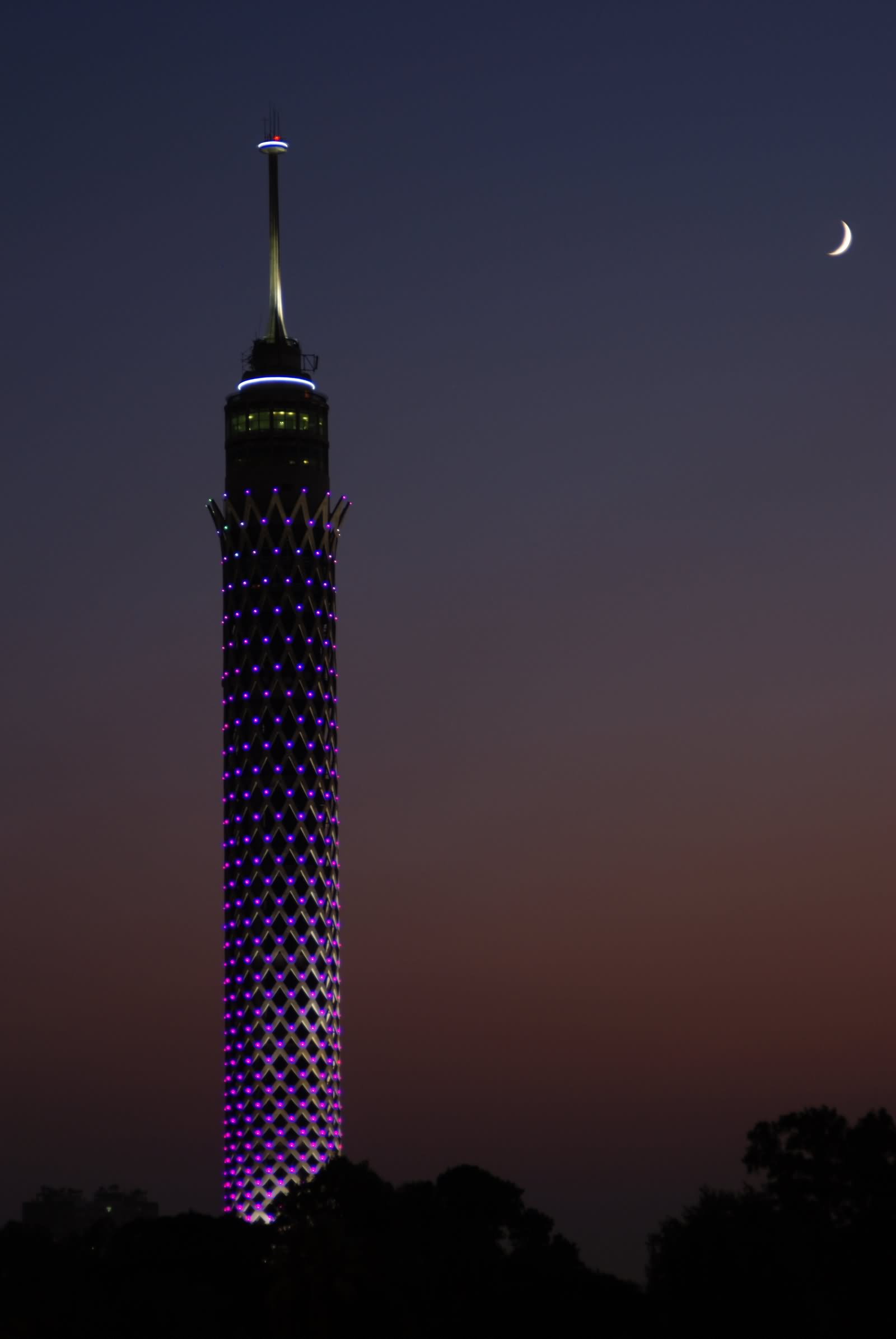 The Cairo Tower At Night With Half Moon