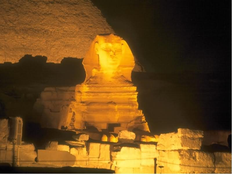 The Great Sphinx Of Giza Illuminated At Night