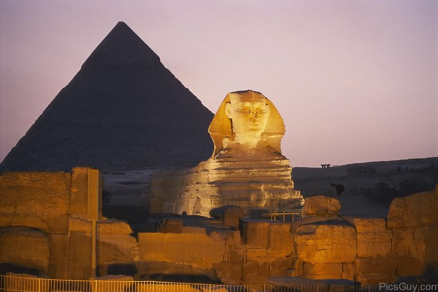 The Great Sphinx Of Giza Night Picture