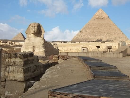 The Great Sphinx of Giza And Pyramids Picture