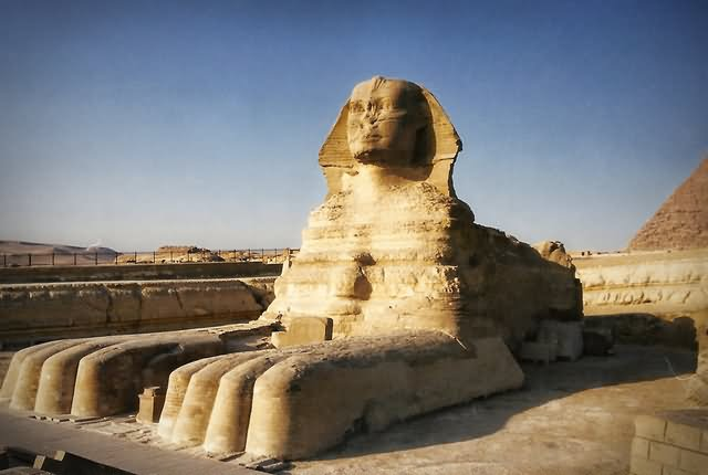 The Great Sphinx of Giza Picture