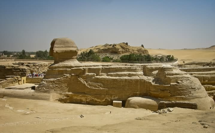 The Great Sphinx of Giza Seen From The Side