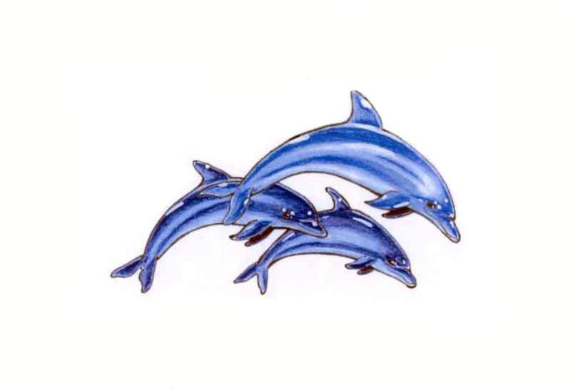 33 latest dolphin tattoo designs and ideas for Dolphin tattoo designs