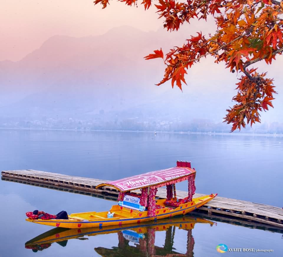 Morning view of the dal lake