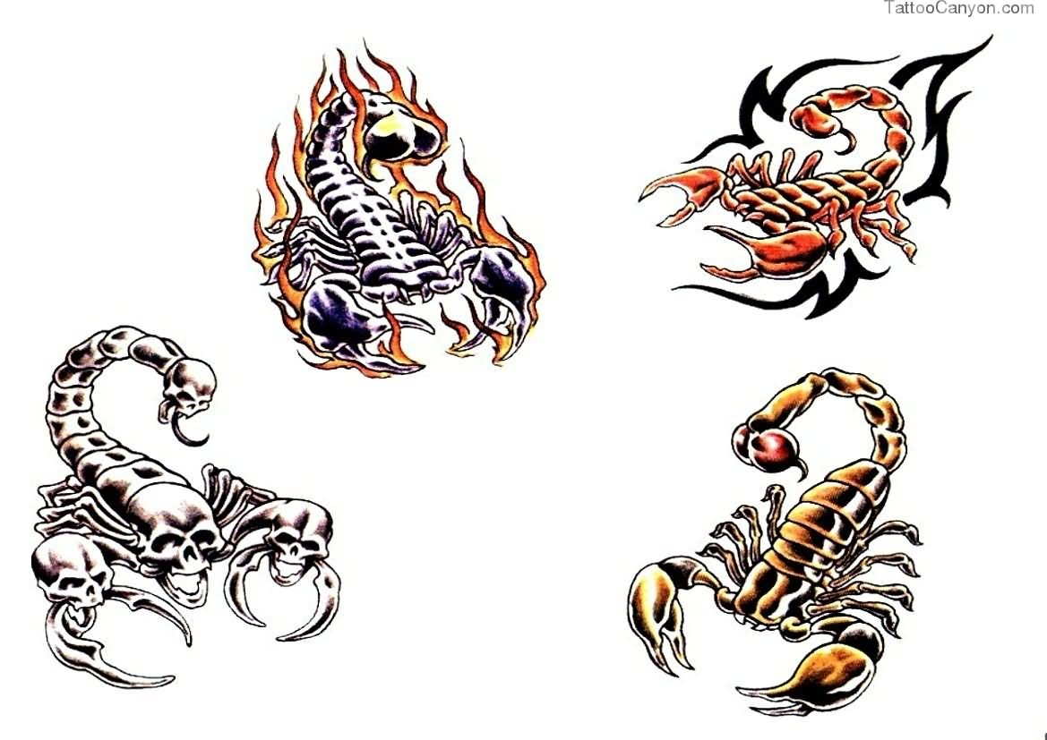 26 latest scorpion tattoo designs for Scorpion pictures for tattoos