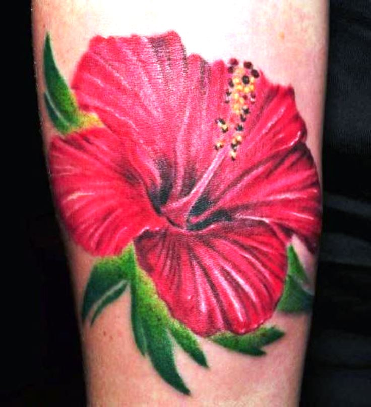 50 beautiful hibiscus tattoos for Red flower tattoo
