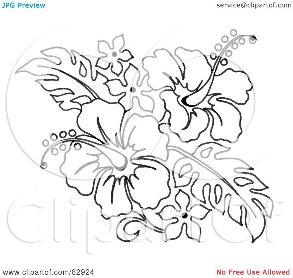 30+ Hibiscus Black And White Tattoos
