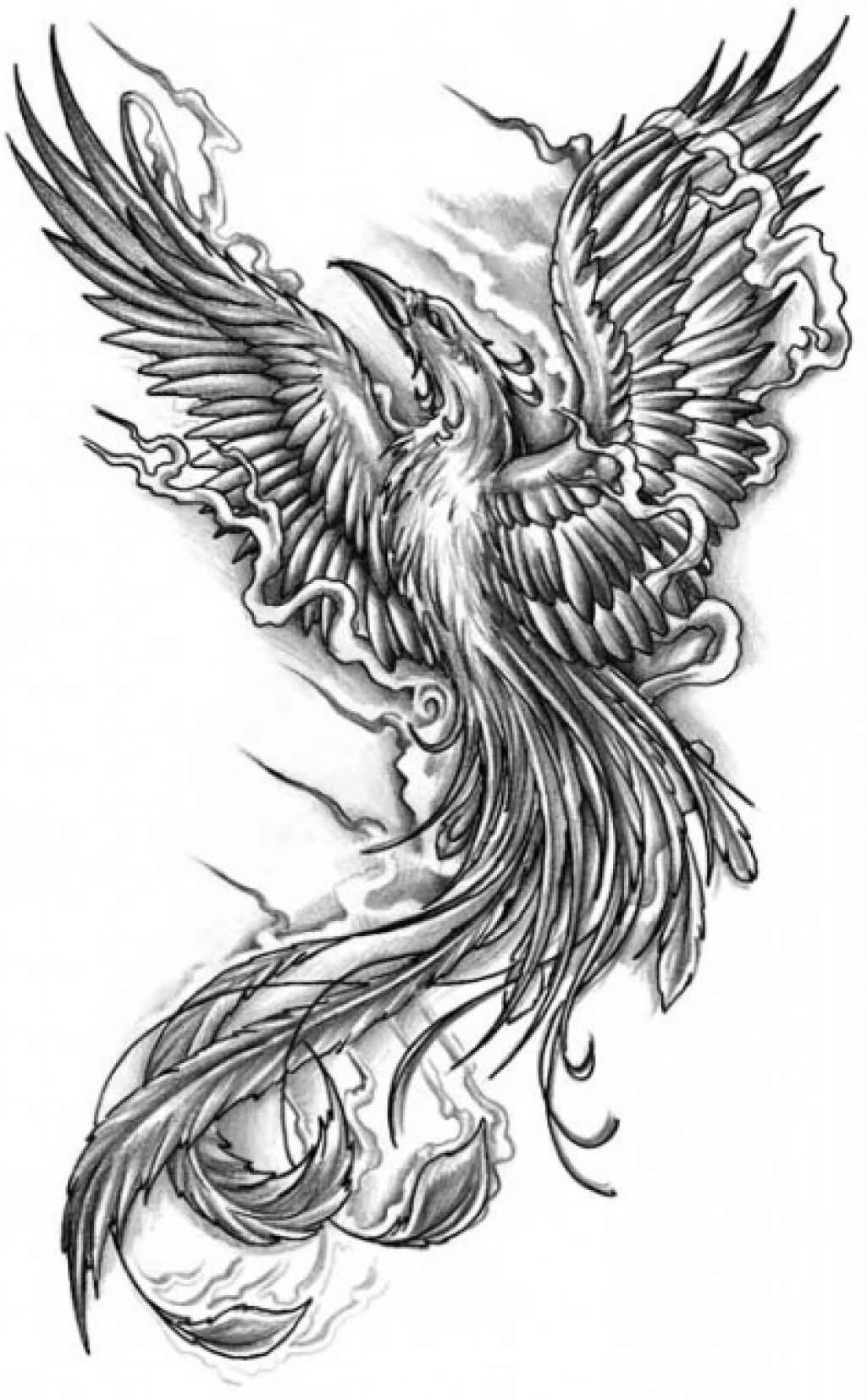 black and grey flying phoenix tattoo design. Black Bedroom Furniture Sets. Home Design Ideas