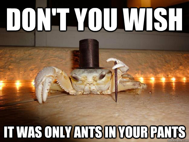 Dont You Wish It Was Only Ants In Your Pants Funny Meme Image don't you wish it was only ants in your pants funny meme image
