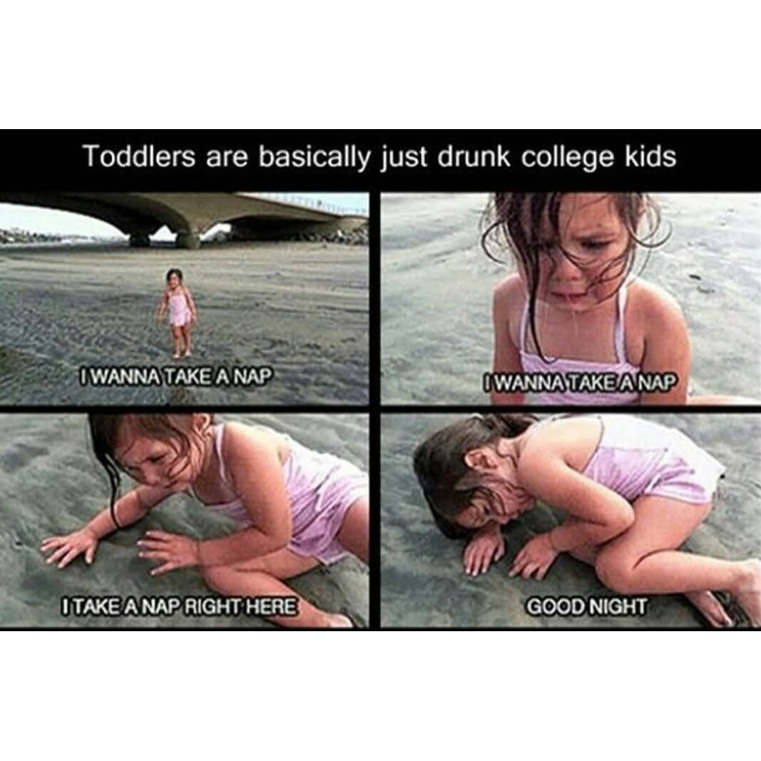 Wasted college girls-8259