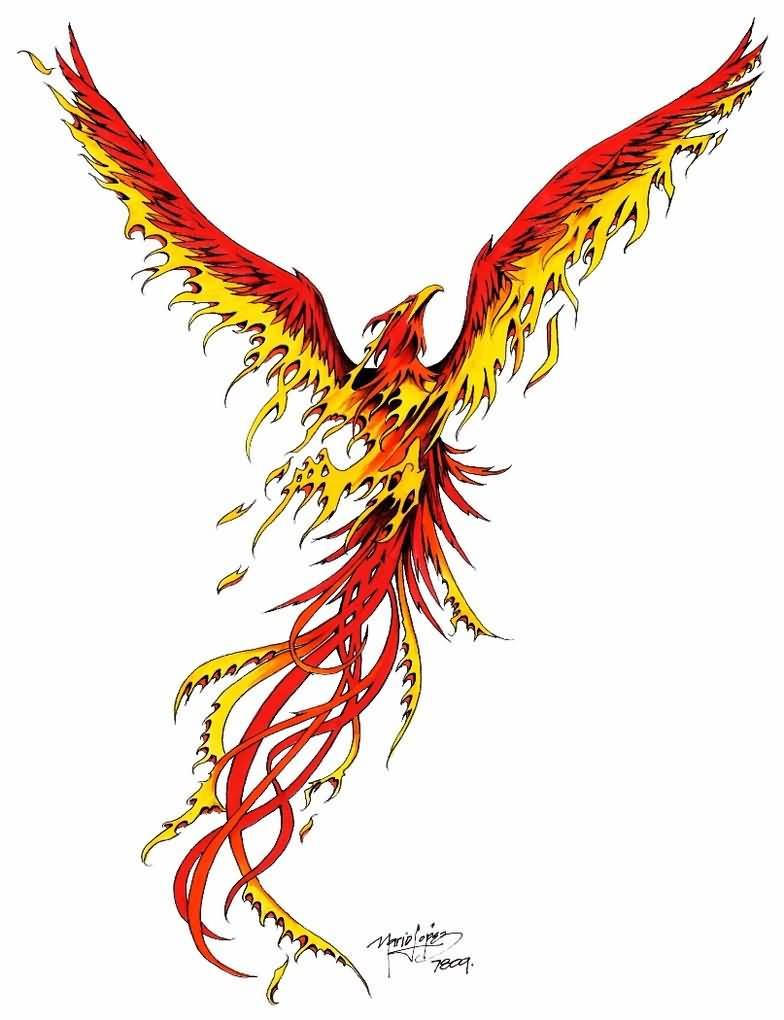 bae6a26b0049c Flaming Phoenix Tattoo Design By Icarosteel