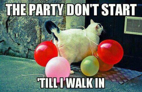 Funny Party Meme The Dont Start Till I Walk In Picture