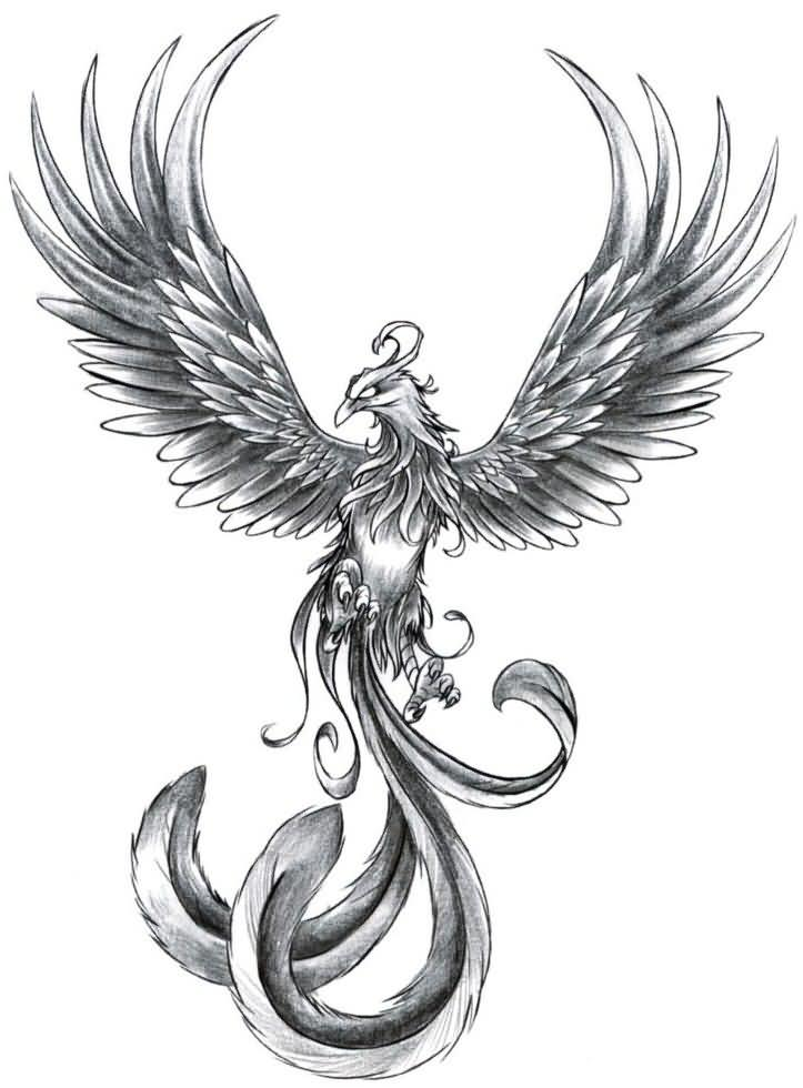 Grey ink phoenix tattoo design for Ashes in tattoo ink