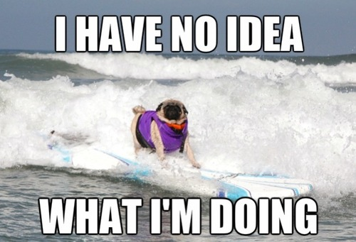 I Have No Idea What I Am Doing Funny Surfing Meme Image 30 most funniest surfing meme pictures and images on the internet,Surf Meme
