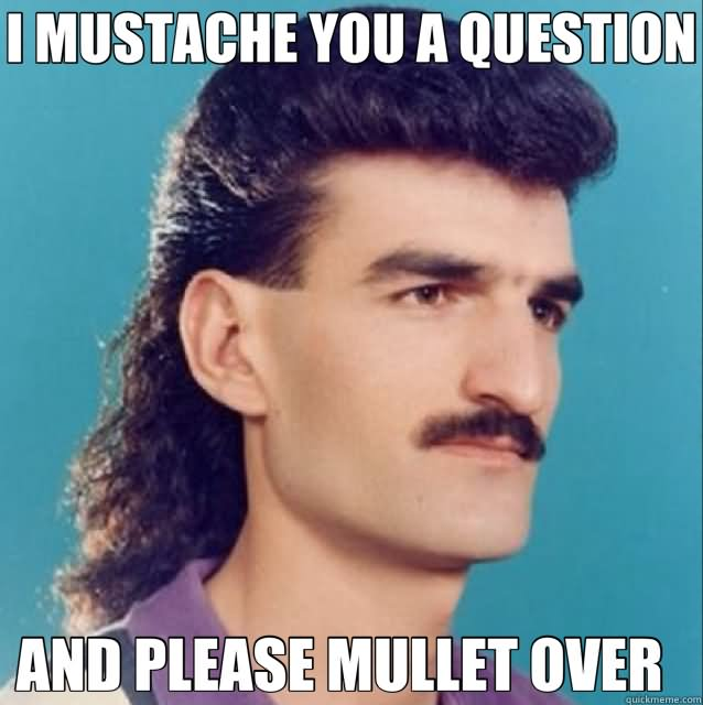 Funny Meme Topics : Very funny mullet meme photos and images of all the time