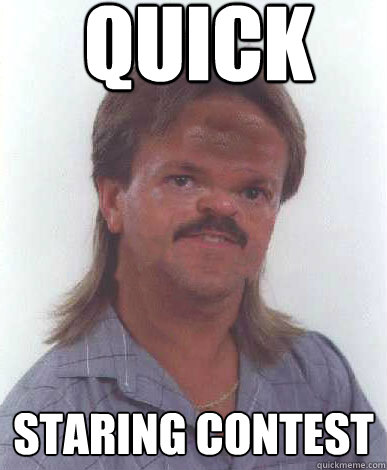 Quick Staring Contest Funny Mullet Meme Image