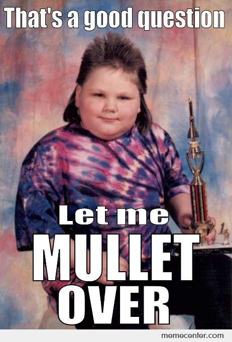 Funniest Kid Meme : Funniest mullet meme pictures and photos that will make