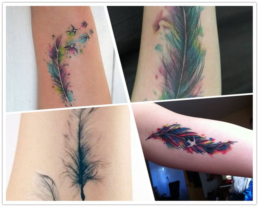 0ede76fe276d9 Attractive Four Watercolor Feather Tattoo Design