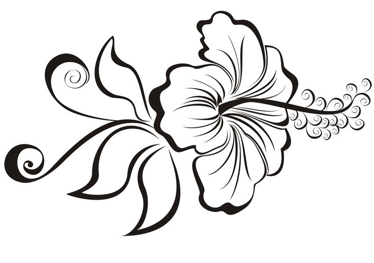 Hibiscus Outline 18 Awesome Flower Tattoo Designs