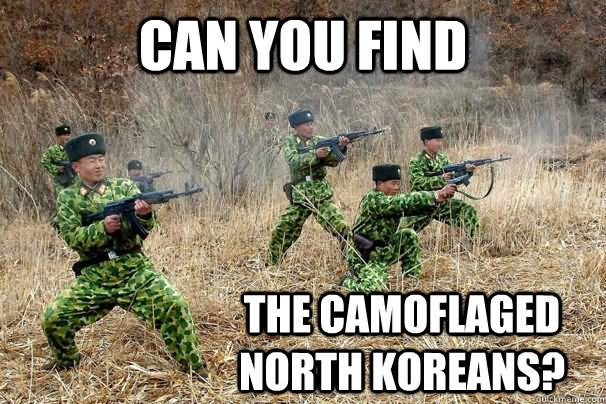 Can You Find The Camoflaged North Koreans Funny Meme Image